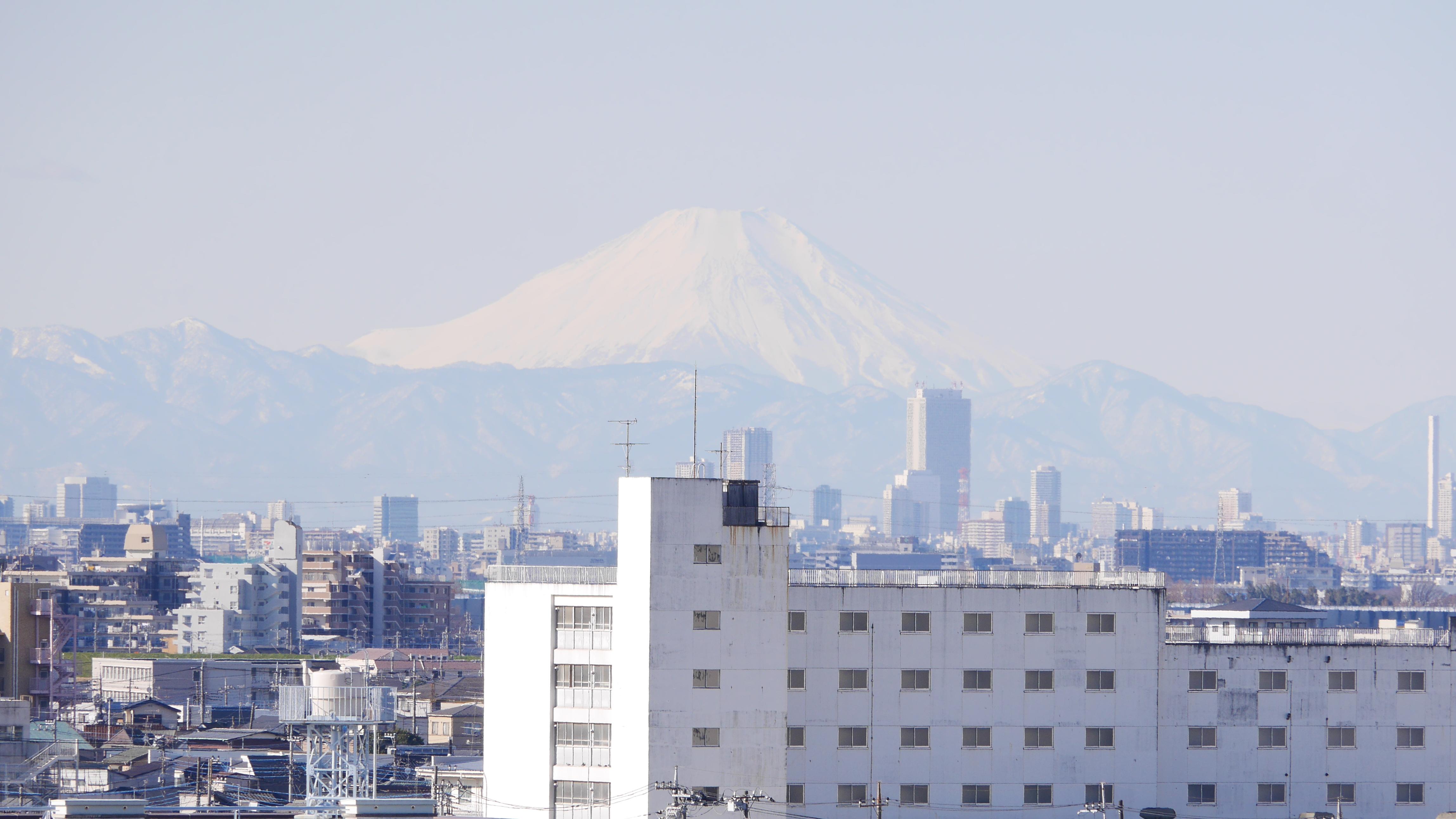松戸本覚寺永代供養墓から見える富士山