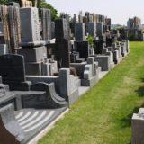 新緑の本覚寺境内墓地