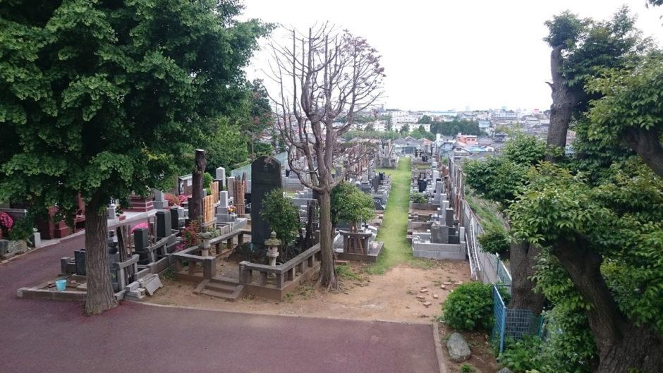 平成27年5月新緑の本覚寺境内墓地