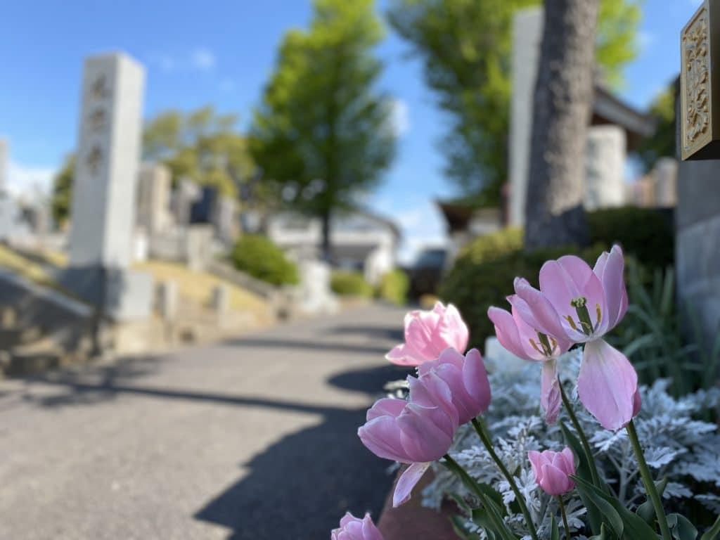本覚寺入口