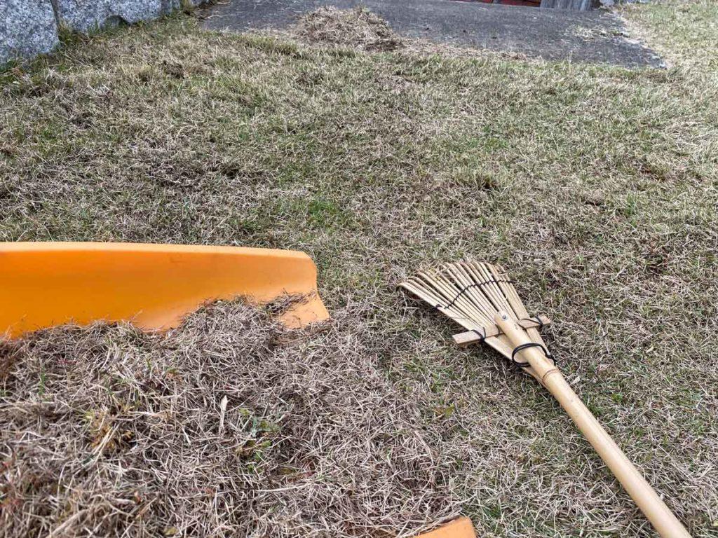 芝生のサッチ