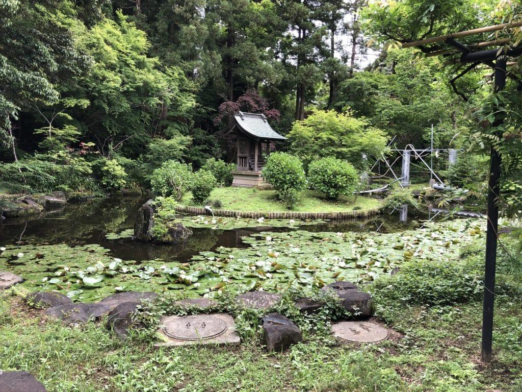 本土寺 弁天池