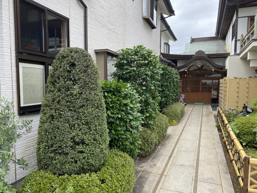 植木の剪定(本覚寺玄関)